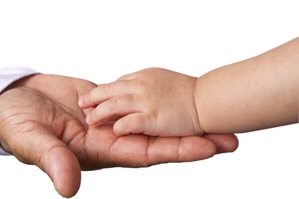 child's hand in parent's